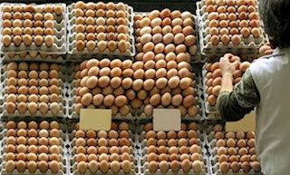 Produção de ovos cresce 7,2% no 2º trimestre e bate recorde