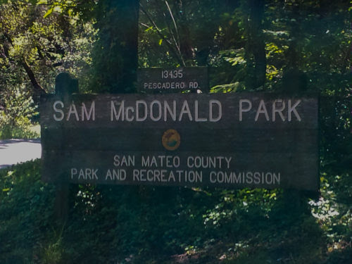 Image result for sam mcdonald park