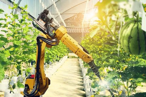 A robot waters food crops in a greenhouse.