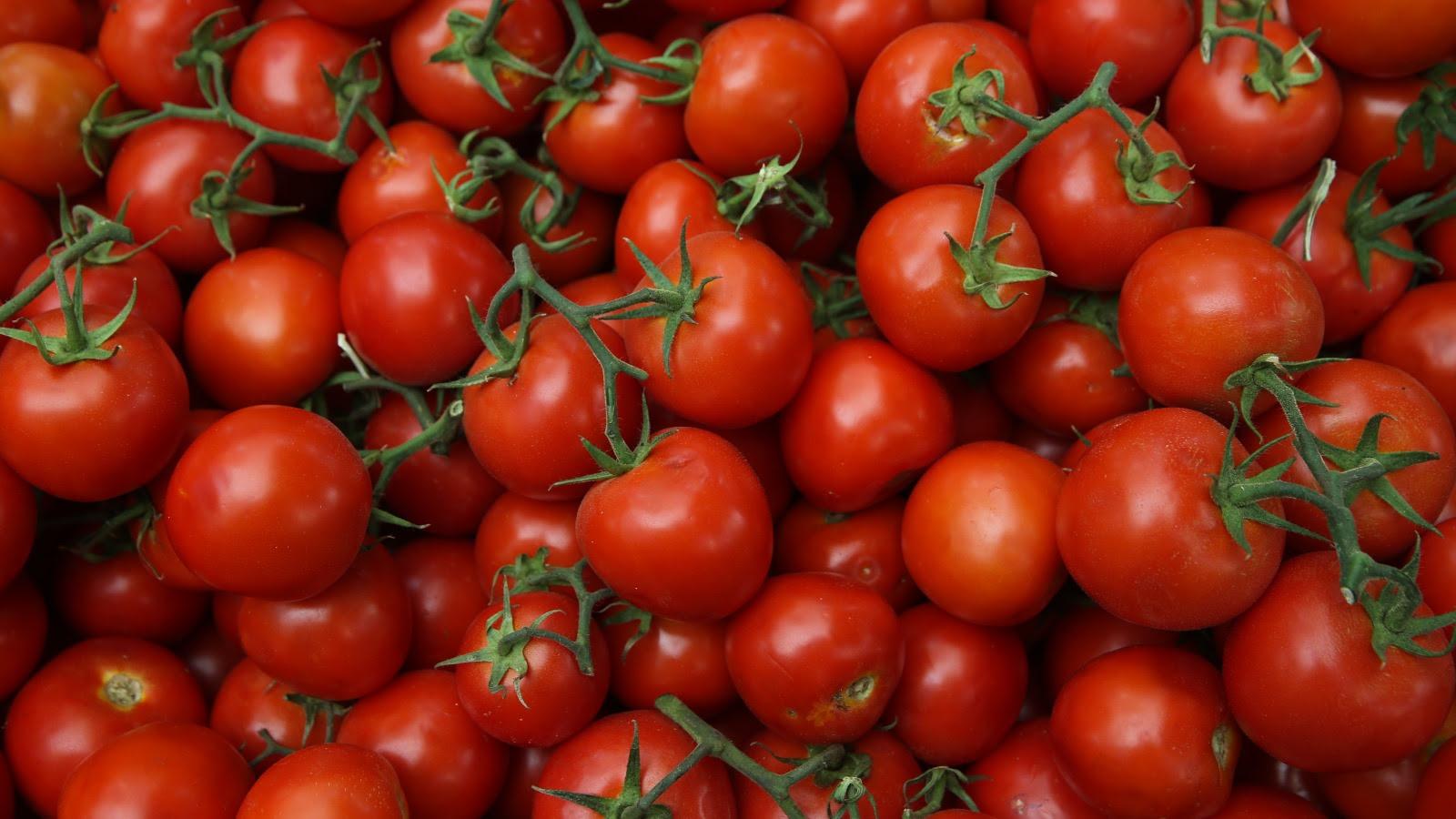 f90-tomatoes.jpg