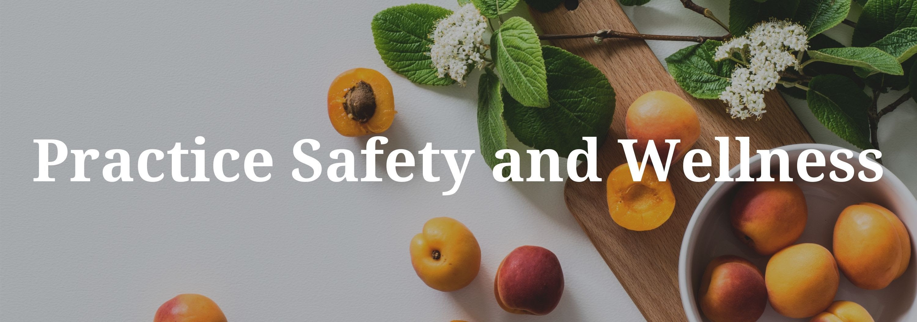 Practice Saftey and Wellness