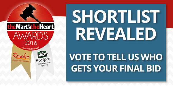 MTH Awards 2016 - Vote to tell us who gets your final bid