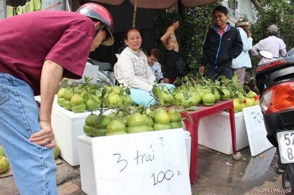Mới hôm qua những quả bưởi hồ lô có chữ nổi được bán với giá hơn 400 nghìn/cặp, vậy mà hôm nay giá chỉ 100 nghìn/ba trái bà Nguyễn Thị Tuyến, ở Hậu Giang cho biết