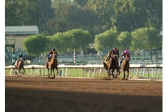 Hard Not to Love runs past the competition in the Santa Monica Stakes at Santa Anita