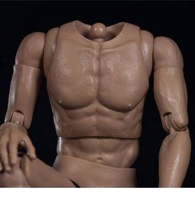 1/6 SCALE BODIES