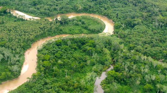 Vue aérienne de l'Amazonie péruvienne