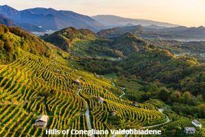 Landscape of Conegliano Valdobbiadene Prosecco_photo credits Arcangelo Piai_2 2