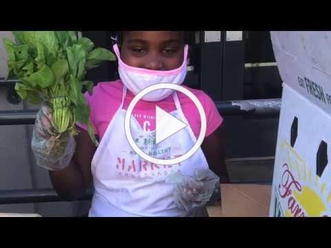Brownsville - PS 284 - A Garden Grows!