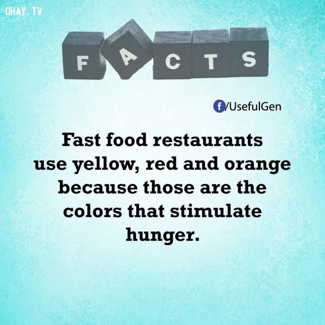 11. Những cửa hàng thức ăn nhanh sử dụng màu vàng, đỏ và cam bởi vì đó là những màu sắc kích thích cơn đói.,tâm lý học,sự thật thú vị,sự thật đáng kinh ngạc,những điều thú vị trong cuộc sống,khám phá