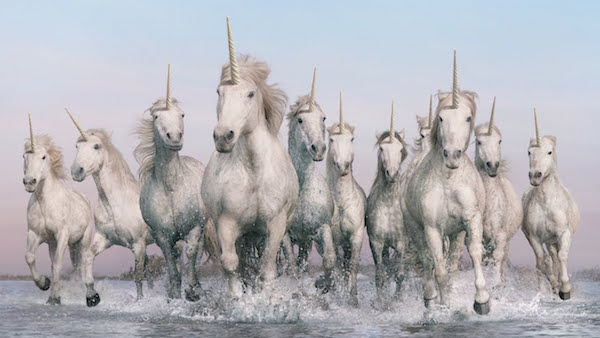 Image: A herd of galloping unicorns