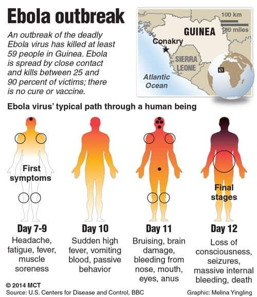 <b>Ebola</b> <b>Outbreak</b> Source Revealed