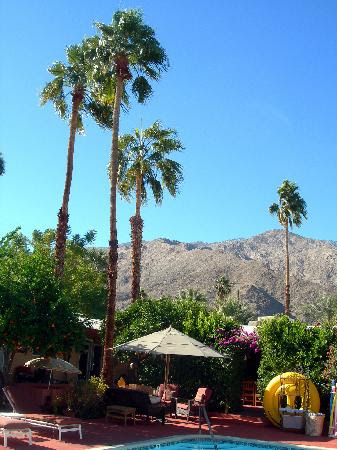 Photos of Tortuga del Sol, Palm Springs