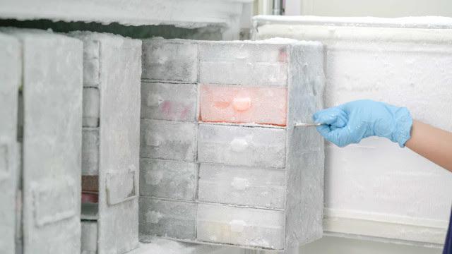 Brasil não tem ultracongeladores que poderiam armazenar vacina da Pfizer contra Covid