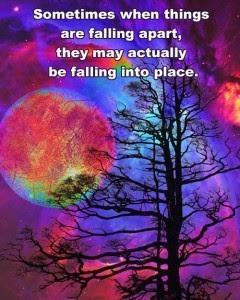 FallingInPlace-240x300
