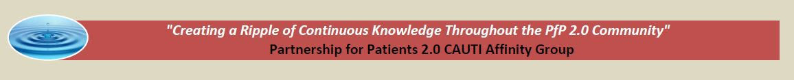 Partnership for Patients (PfP) 2.0