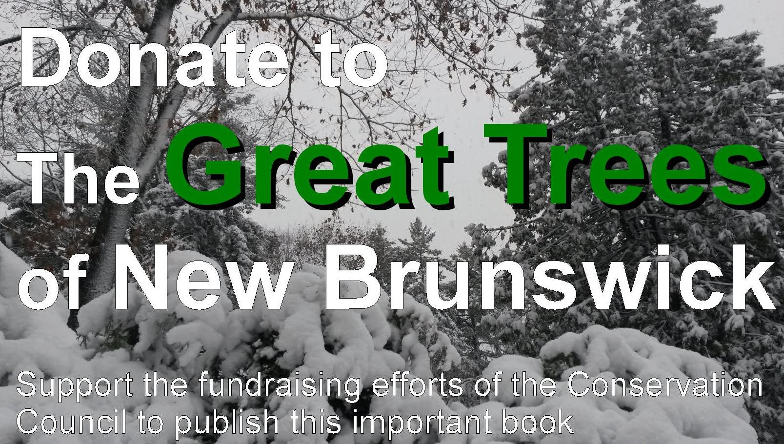 Donate_Great_Tree.jpg