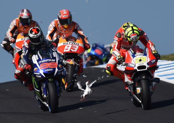 -- AFP PICTURES OF THE YEAR 2015 -- A seagull flies in front of Repsol Honda rider Marc Marquez (C) and Movitar Yamaha rider Jorge Lorenzo of Spain after smashing into Ducati rider Andrea Iannone of Italy on the opening lap of the MotoGP Australian Grand Prix at Phillip Island on October 18, 2015. IMAGE STRICTLY RESTRICTED TO EDITORIAL USE - STRICTLY NO COMMERCIAL USE AFP PHOTO/Paul Crock