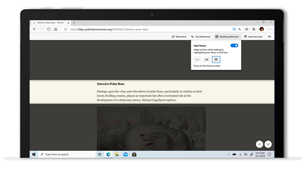 PC screen image showing Immersive Reader in Edge.