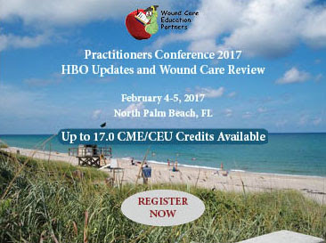 Practitioners Conference 2017