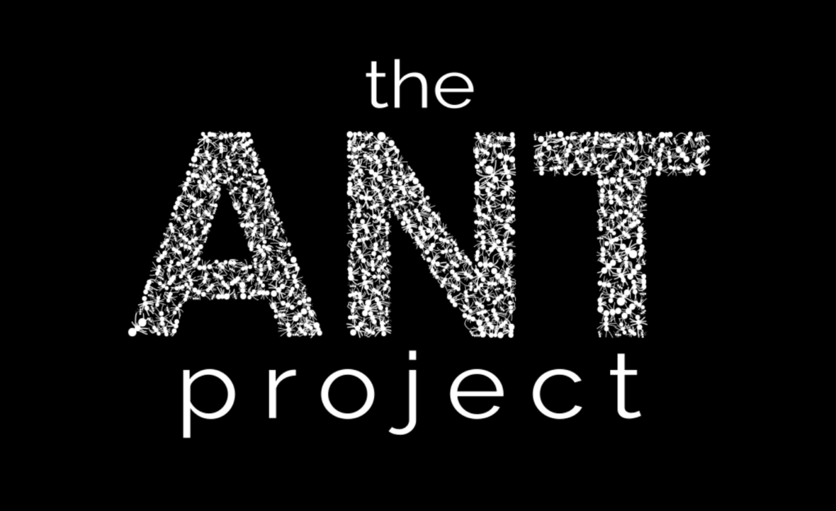 ANT-Project-logo