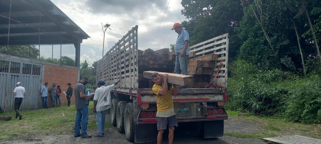 En golpe al transporte ilegal de madera, CARDER decomisó 138 bloques de caimito - Noticias de Colombia