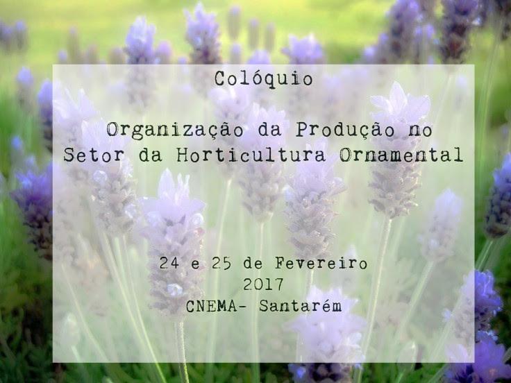 Apresentações Colóquio - Organização da Produção no Setor da Horticultura Ornamental