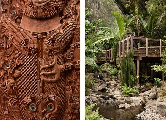 Te Wao Nui