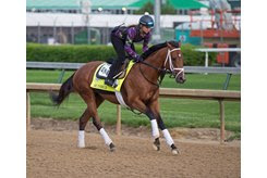 Audible trains ahead of his third-place effort in the Kentucky Derby at Churchill Downs
