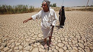 Türkiye'den doğan Fırat Nehri, Suriye'den geçip Irak'a dökülüyor. 2009'da yaşanan kuraklıkta Iraklı çiftçiler büyük zarar görmüştü (Fotoğraf: Bağdat-Irak)