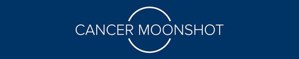Moonshot banner