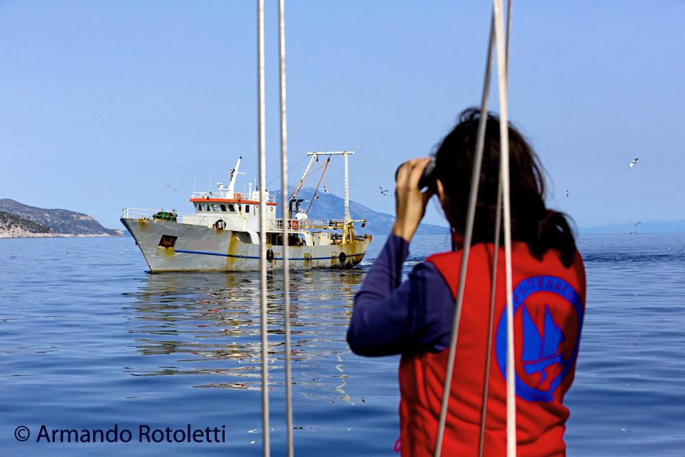 FisheriesMonitor