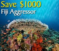 Fiji Aggressor
