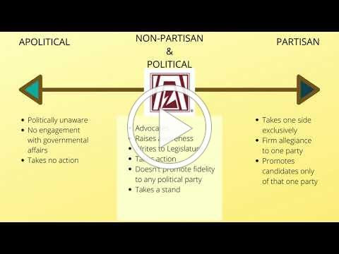 Zonta - Political? Partisan? Find Out Here!